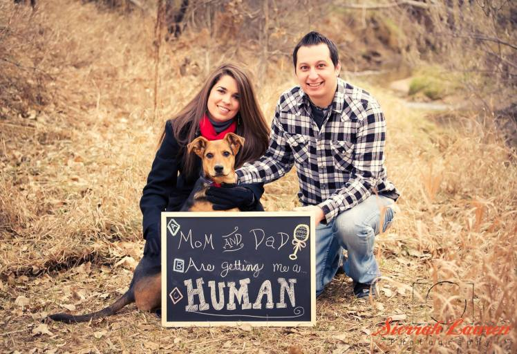 Hope and Joel Ebel Pregnancy Announcement Mommy and Daddy are getting me a human.jpg